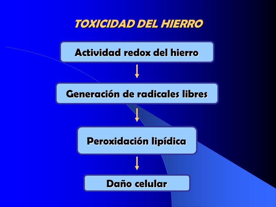 TOXICIDAD DEL HIERRO Actividad redox del hierro