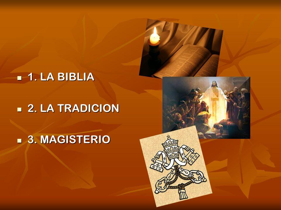 1. LA BIBLIA 2. LA TRADICION 3. MAGISTERIO