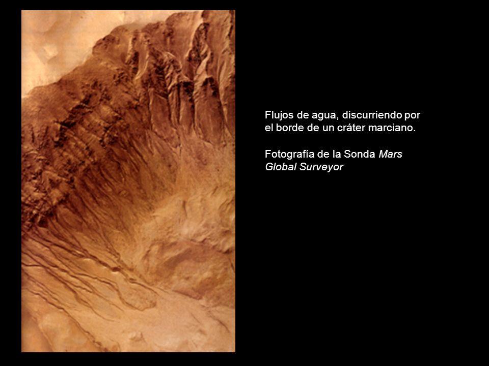Flujos de agua, discurriendo por el borde de un cráter marciano.