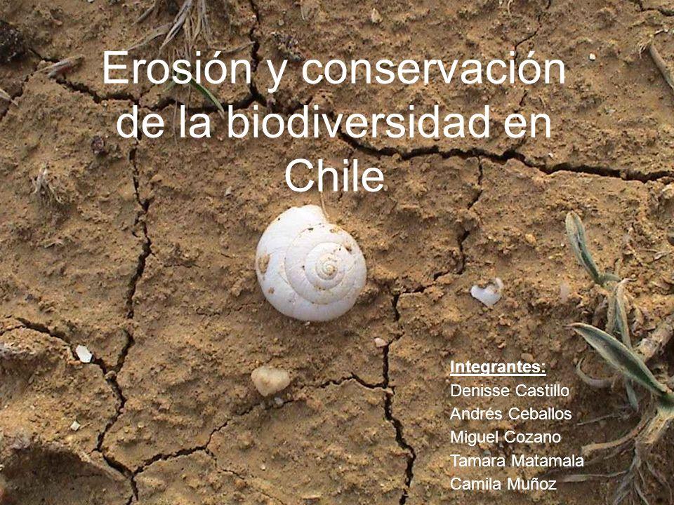 Erosión y conservación de la biodiversidad en Chile