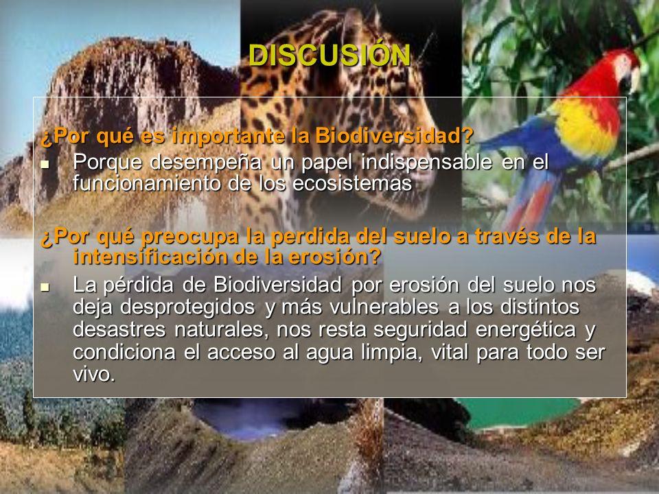 DISCUSIÓN ¿Por qué es importante la Biodiversidad