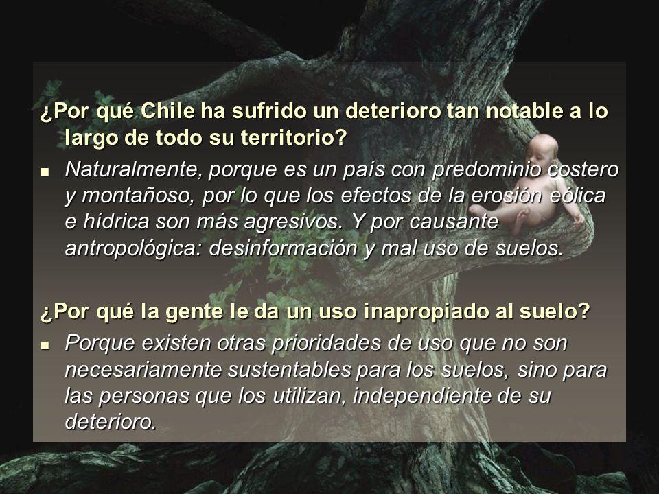 ¿Por qué Chile ha sufrido un deterioro tan notable a lo largo de todo su territorio