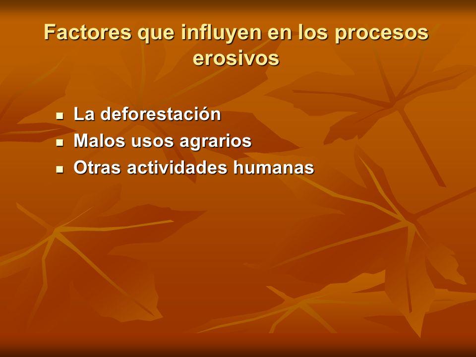Factores que influyen en los procesos erosivos