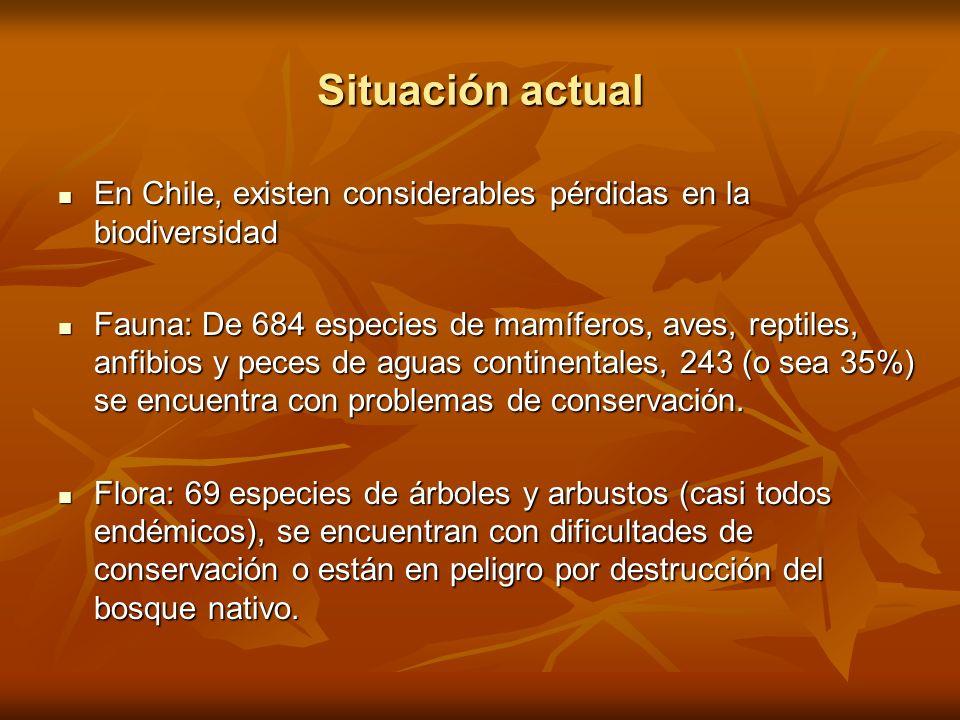 Situación actual En Chile, existen considerables pérdidas en la biodiversidad.