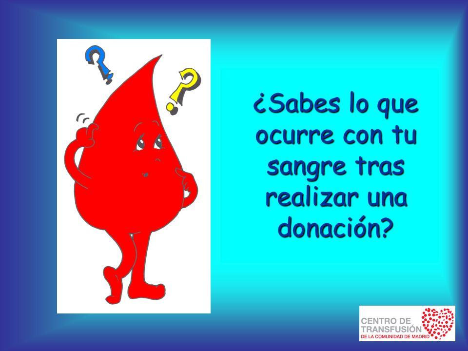 ¿Sabes lo que ocurre con tu sangre tras realizar una donación