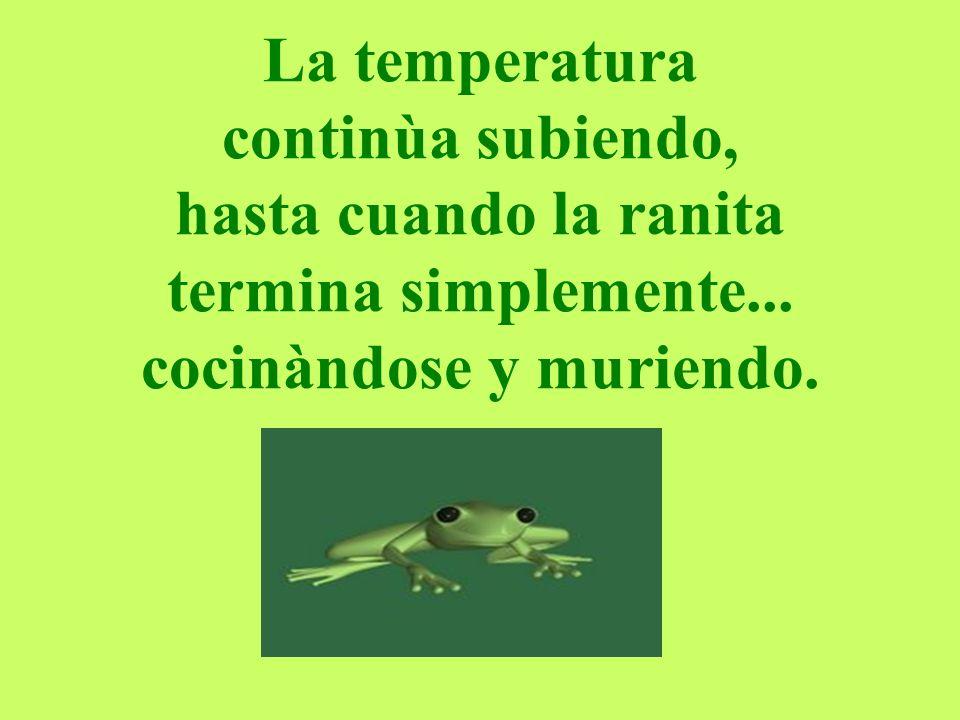 La temperatura continùa subiendo, hasta cuando la ranita termina simplemente...