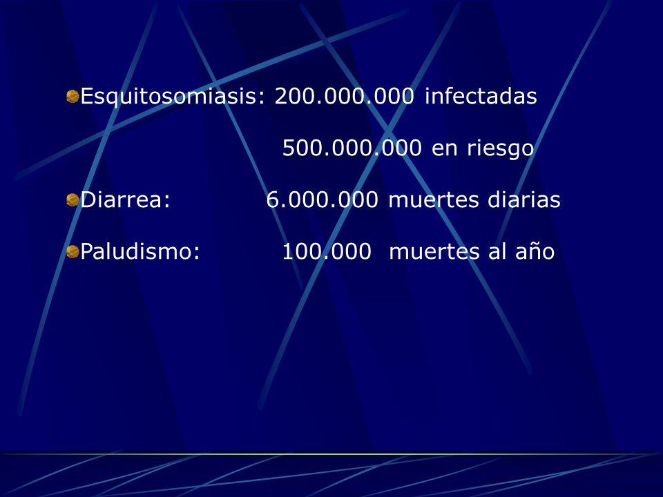 Esquitosomiasis: 200.000.000 infectadas