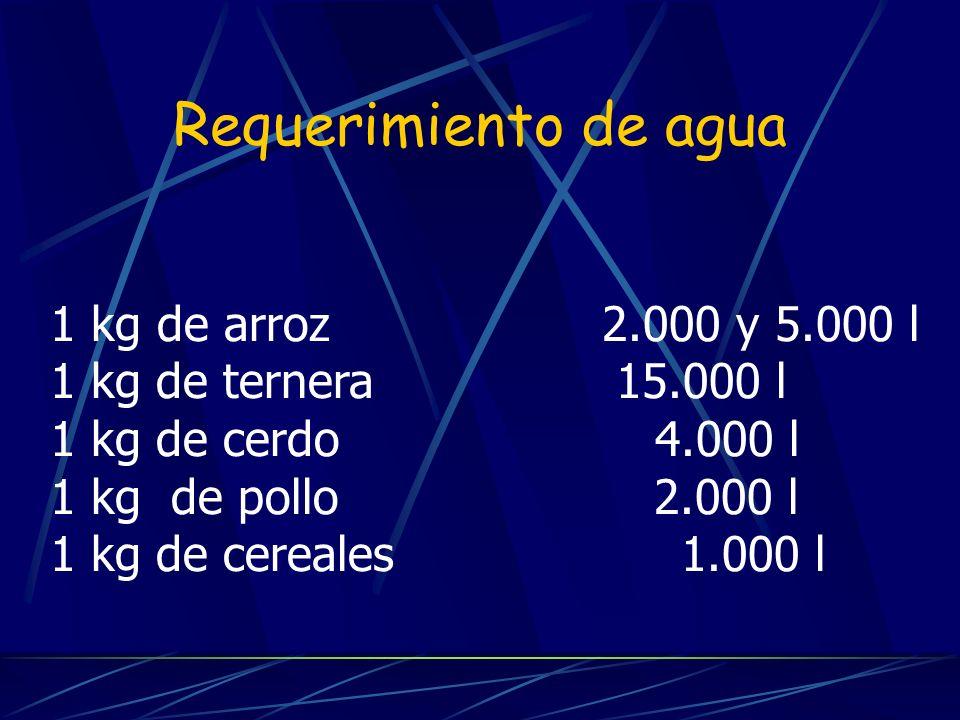 Requerimiento de agua 1 kg de arroz 2.000 y 5.000 l