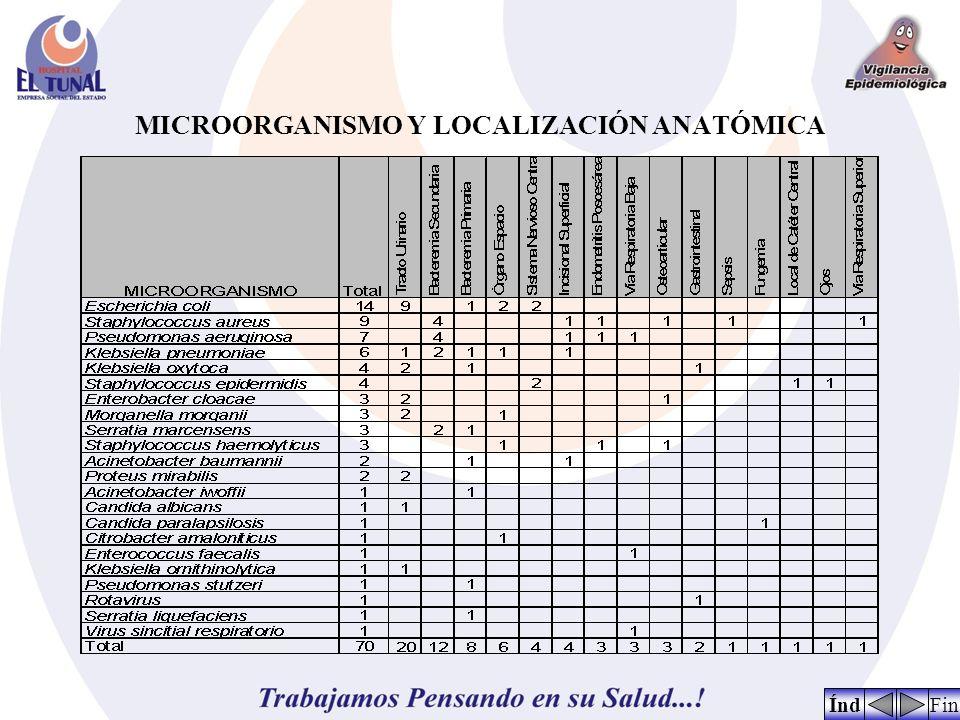 MICROORGANISMO Y LOCALIZACIÓN ANATÓMICA