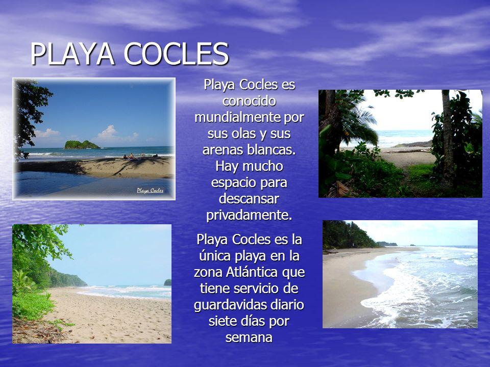 PLAYA COCLES Playa Cocles es conocido mundialmente por sus olas y sus arenas blancas. Hay mucho espacio para descansar privadamente.