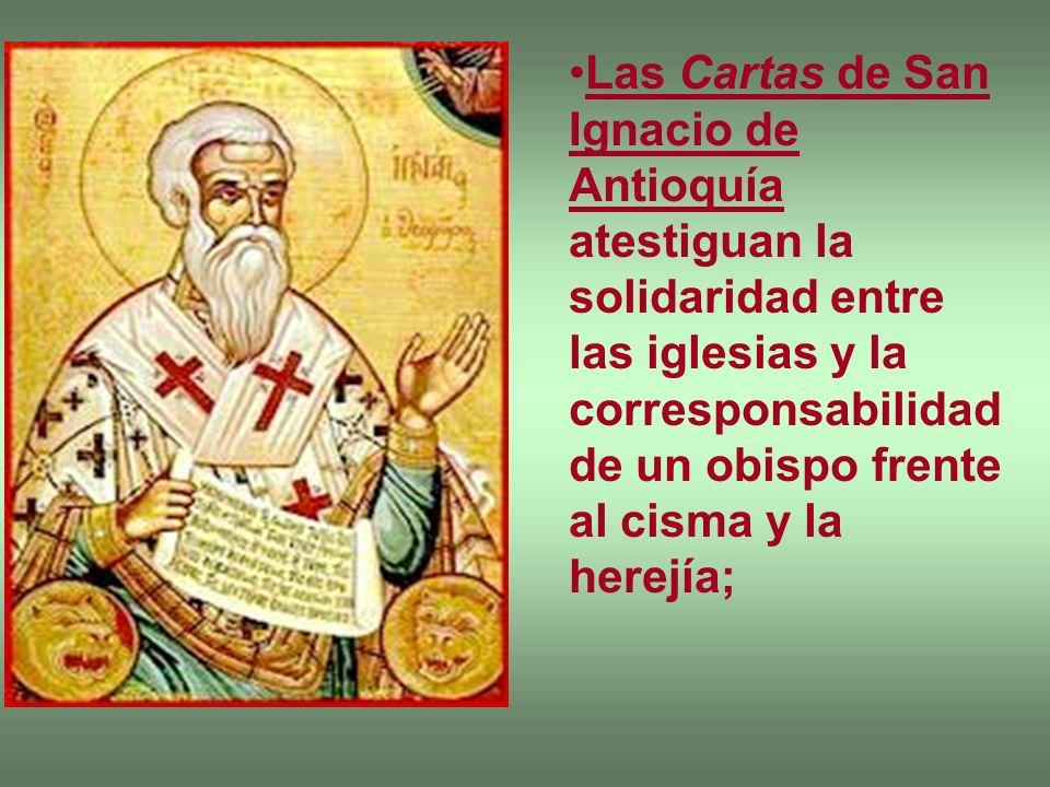 Las Cartas de San Ignacio de Antioquía atestiguan la solidaridad entre las iglesias y la corresponsabilidad de un obispo frente al cisma y la herejía;