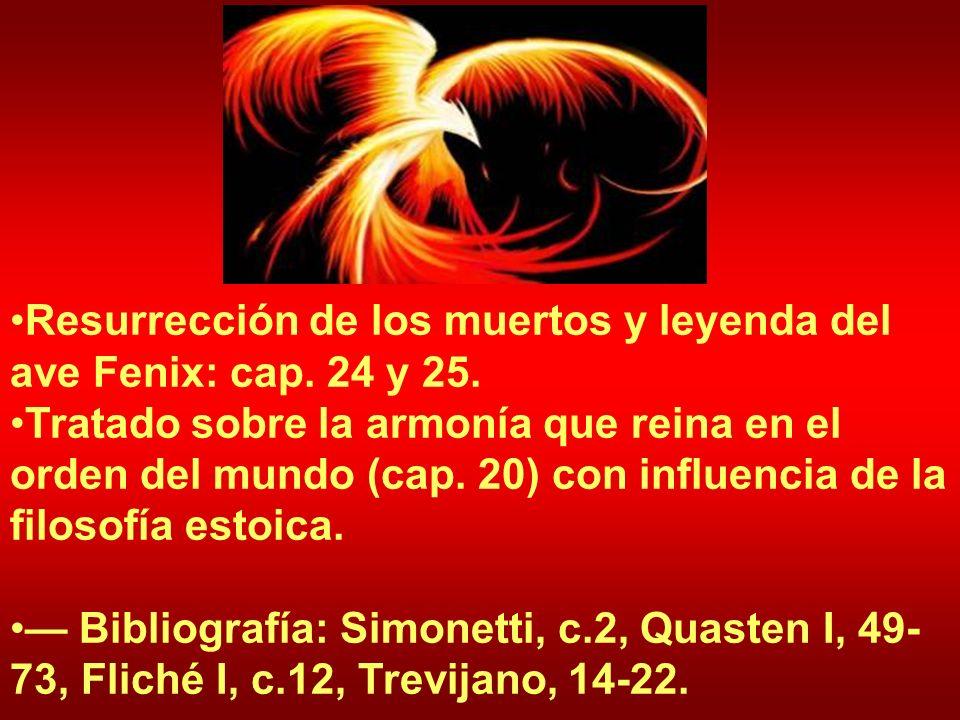 Resurrección de los muertos y leyenda del ave Fenix: cap. 24 y 25.