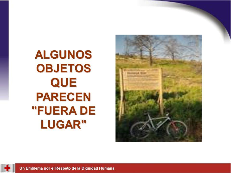ALGUNOS OBJETOS QUE PARECEN FUERA DE LUGAR