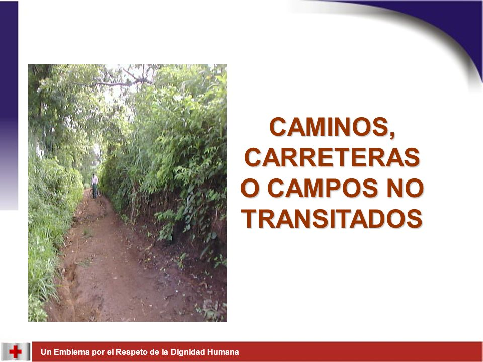 CAMINOS, CARRETERAS O CAMPOS NO TRANSITADOS