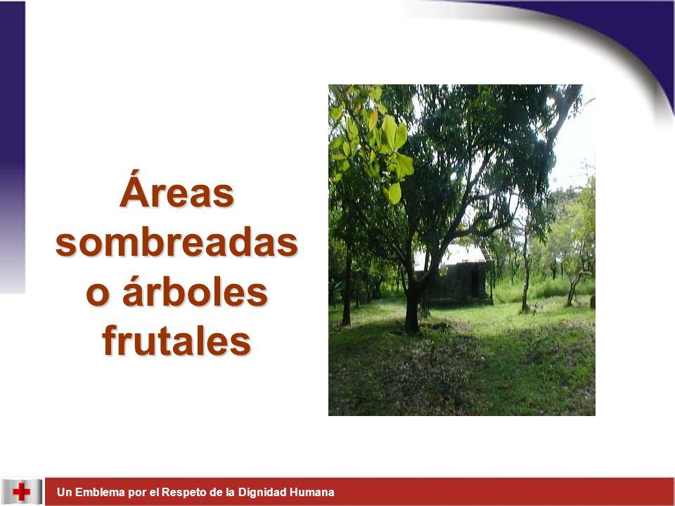 Áreas sombreadas o árboles frutales