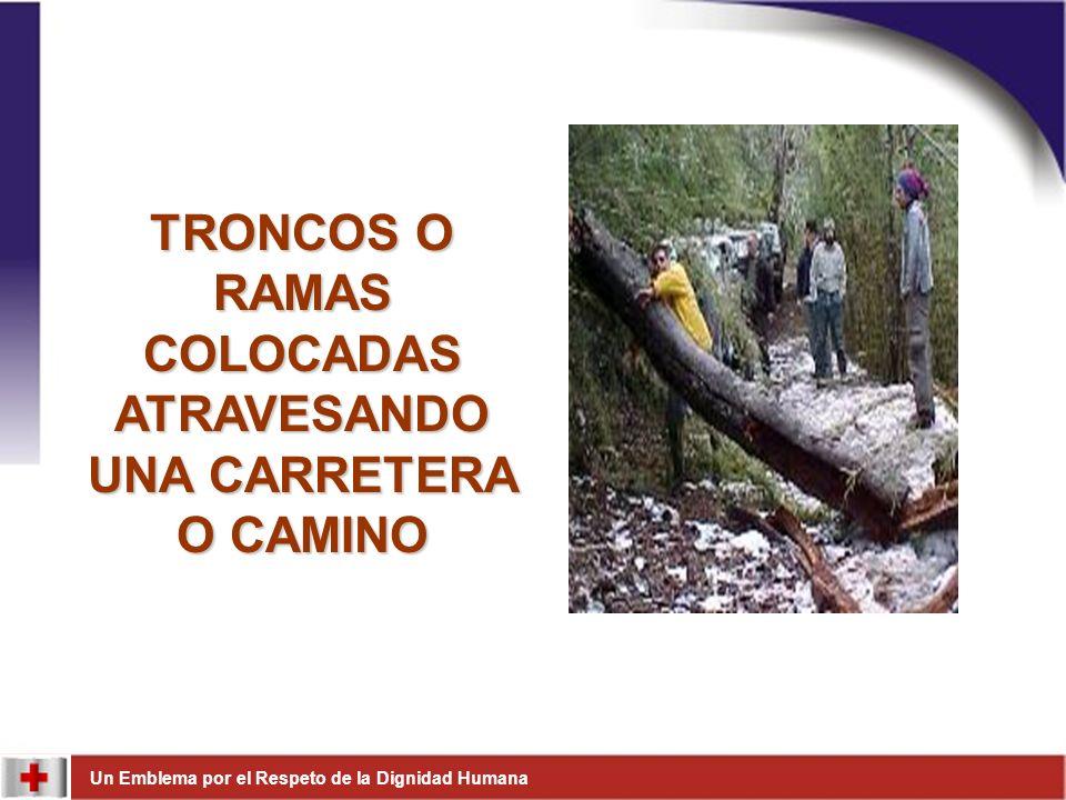 TRONCOS O RAMAS COLOCADAS ATRAVESANDO UNA CARRETERA O CAMINO