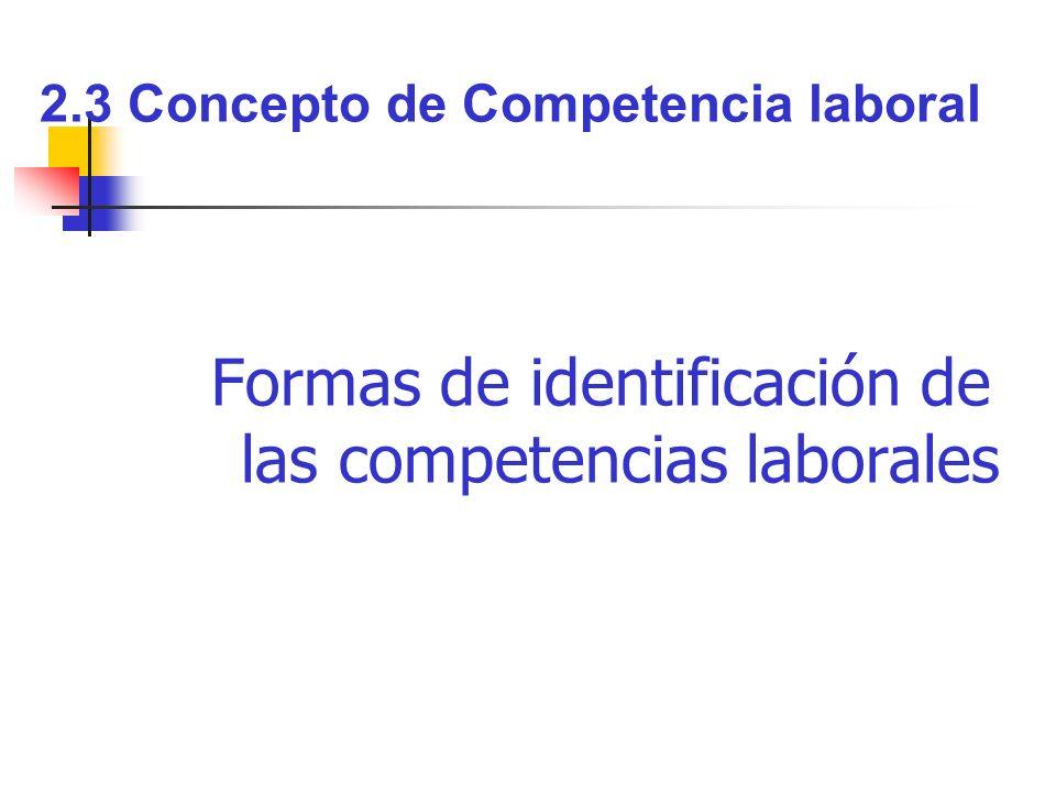 2.3 Concepto de Competencia laboral