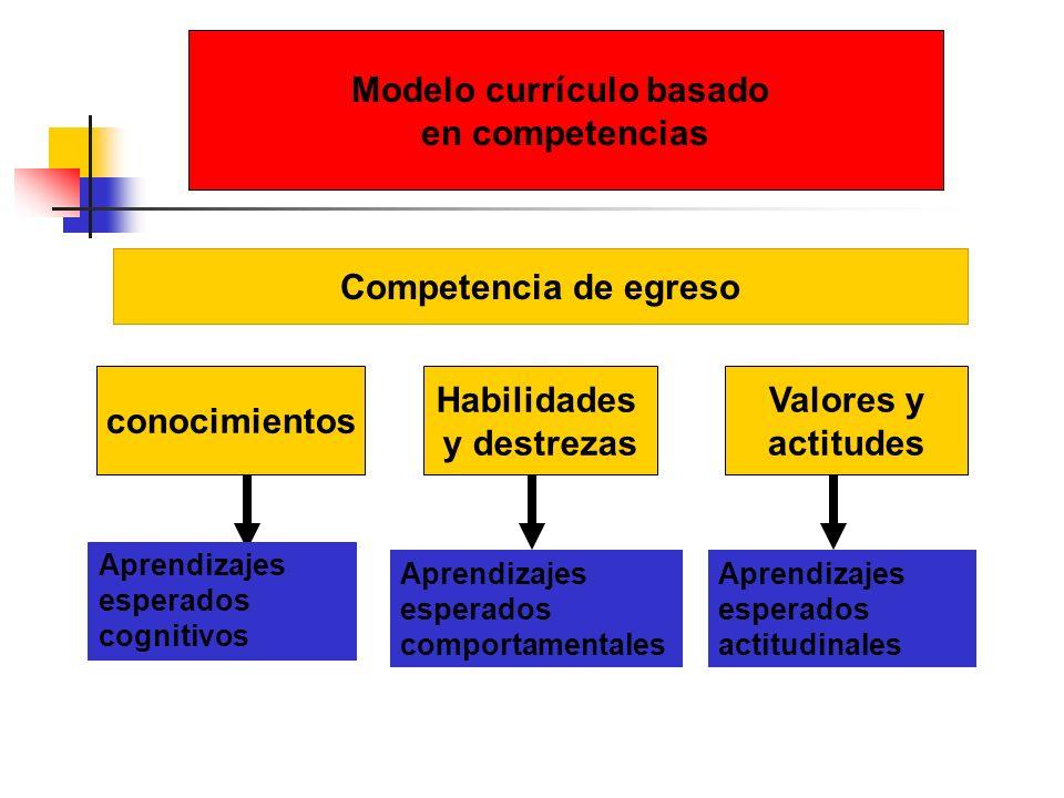 Modelo currículo basado