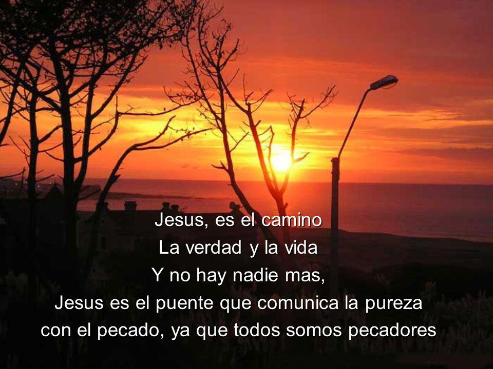Jesus es el puente que comunica la pureza