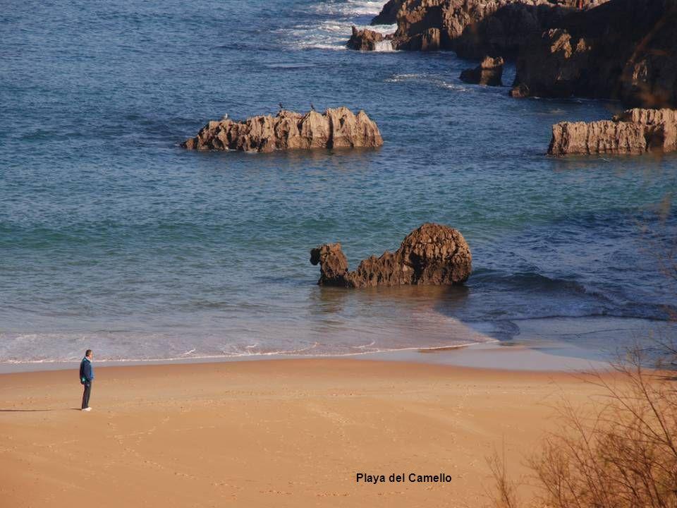 Playa del Camello