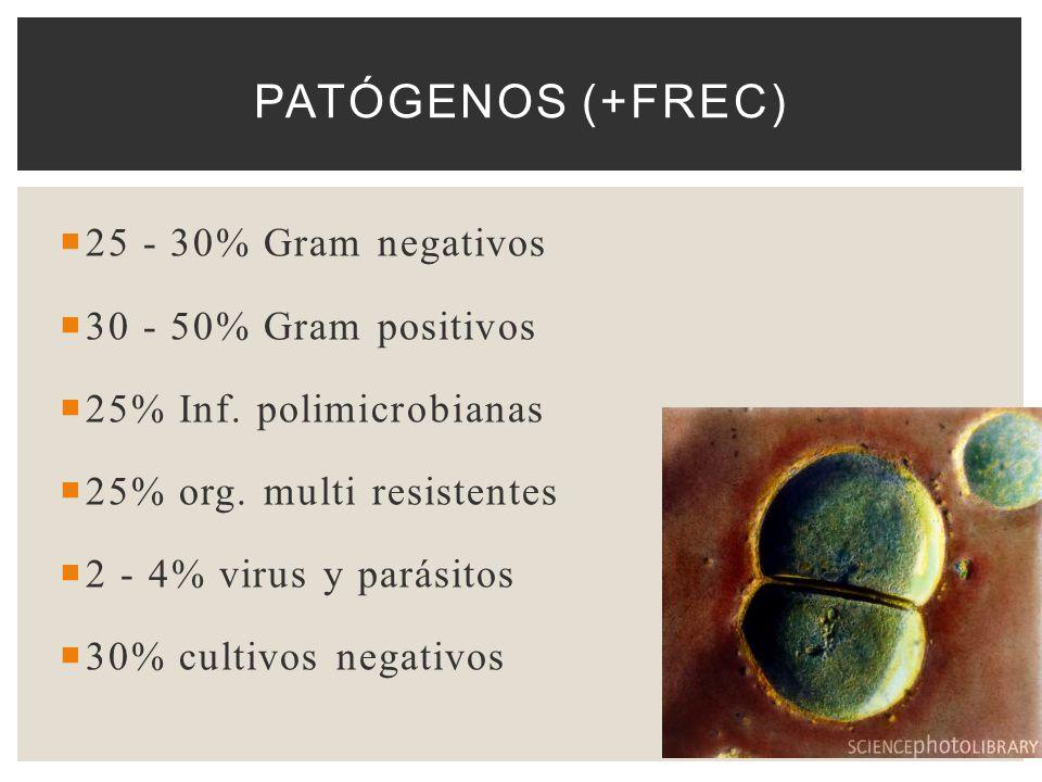 Patógenos (+frec) 25 - 30% Gram negativos 30 - 50% Gram positivos