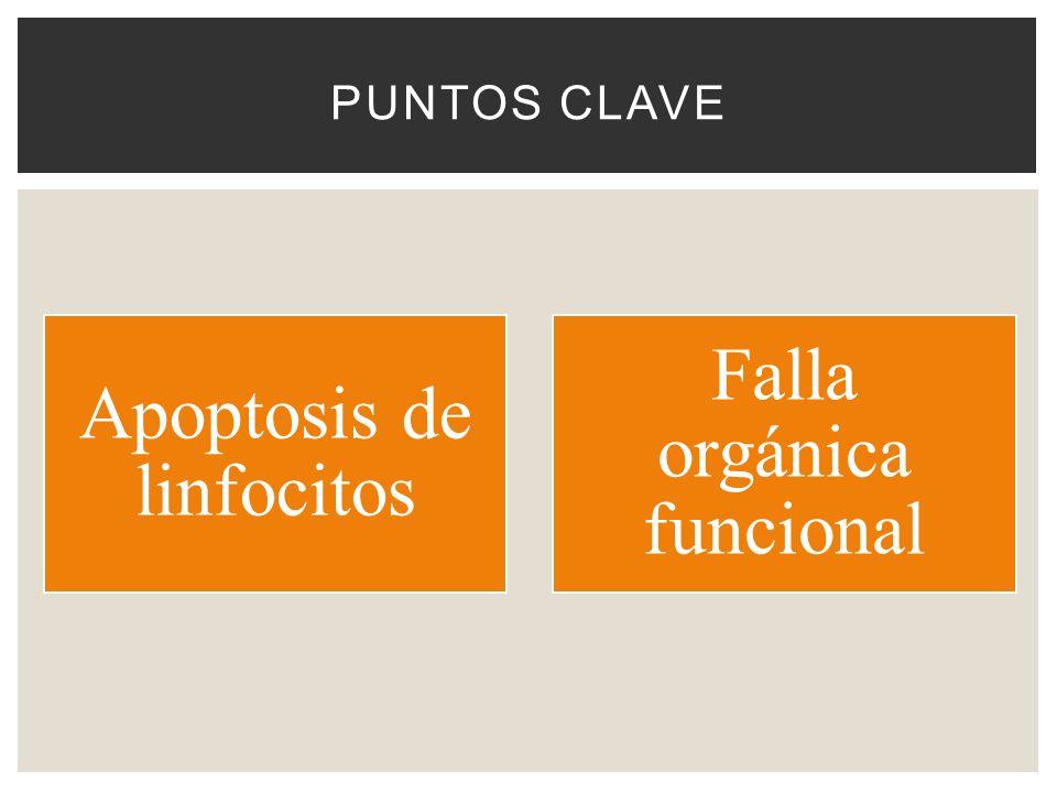 Apoptosis de linfocitos Falla orgánica funcional
