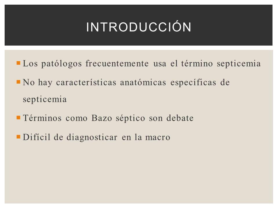 Introducción Los patólogos frecuentemente usa el término septicemia