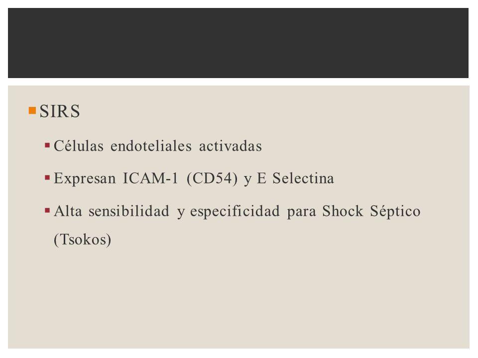 SIRS Células endoteliales activadas
