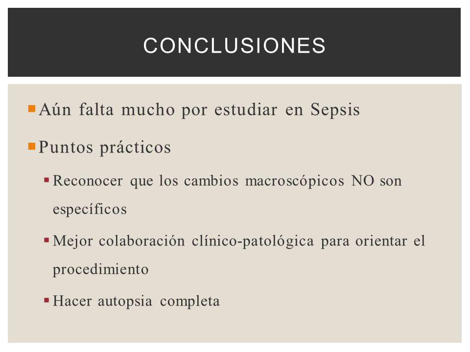 Conclusiones Aún falta mucho por estudiar en Sepsis Puntos prácticos