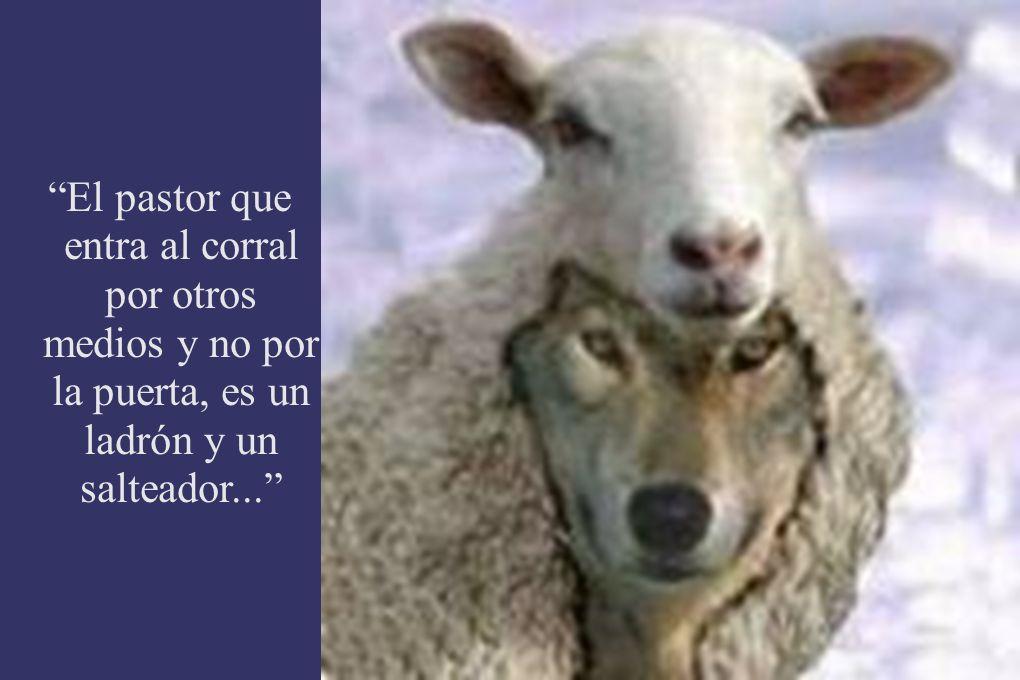 El pastor que entra al corral por otros medios y no por la puerta, es un ladrón y un salteador...