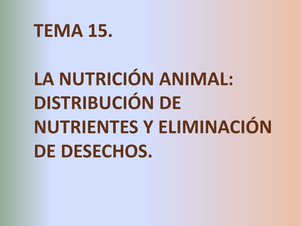 TEMA 15. LA NUTRICIÓN ANIMAL: DISTRIBUCIÓN DE NUTRIENTES Y ELIMINACIÓN DE DESECHOS.