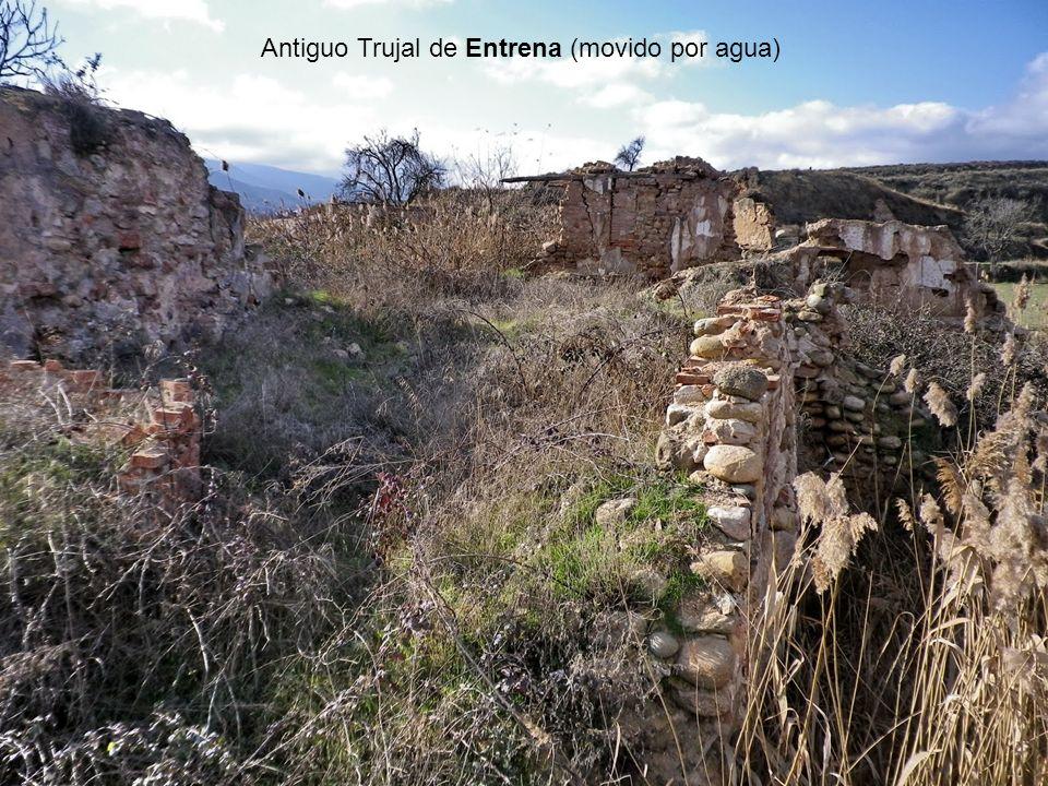 Antiguo Trujal de Entrena (movido por agua)