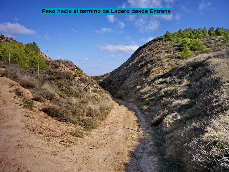 Paso hacia el termino de Ladero desde Entrena