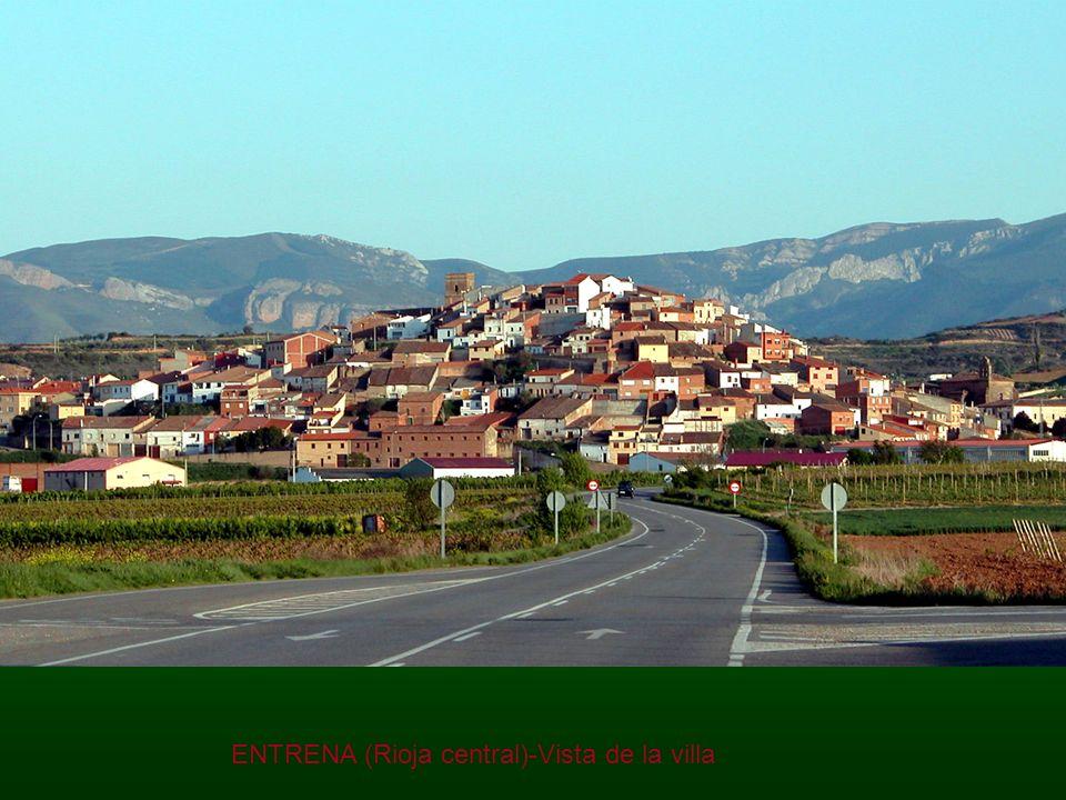 ENTRENA (Rioja central)-Vista de la villa