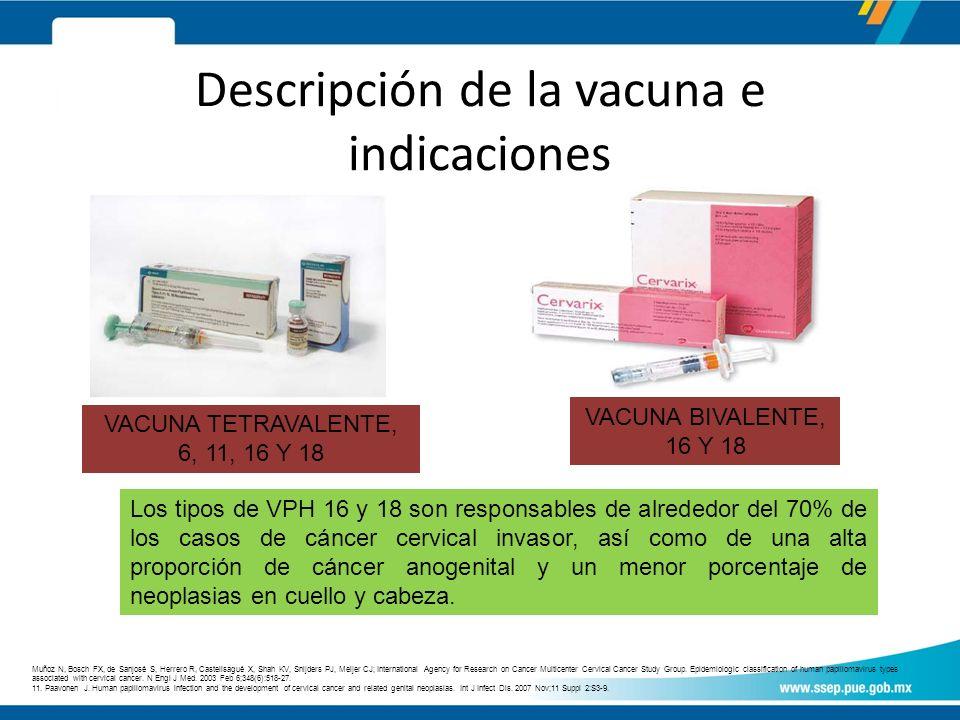 Descripción de la vacuna e indicaciones