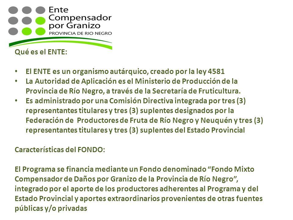 Qué es el ENTE: El ENTE es un organismo autárquico, creado por la ley 4581.