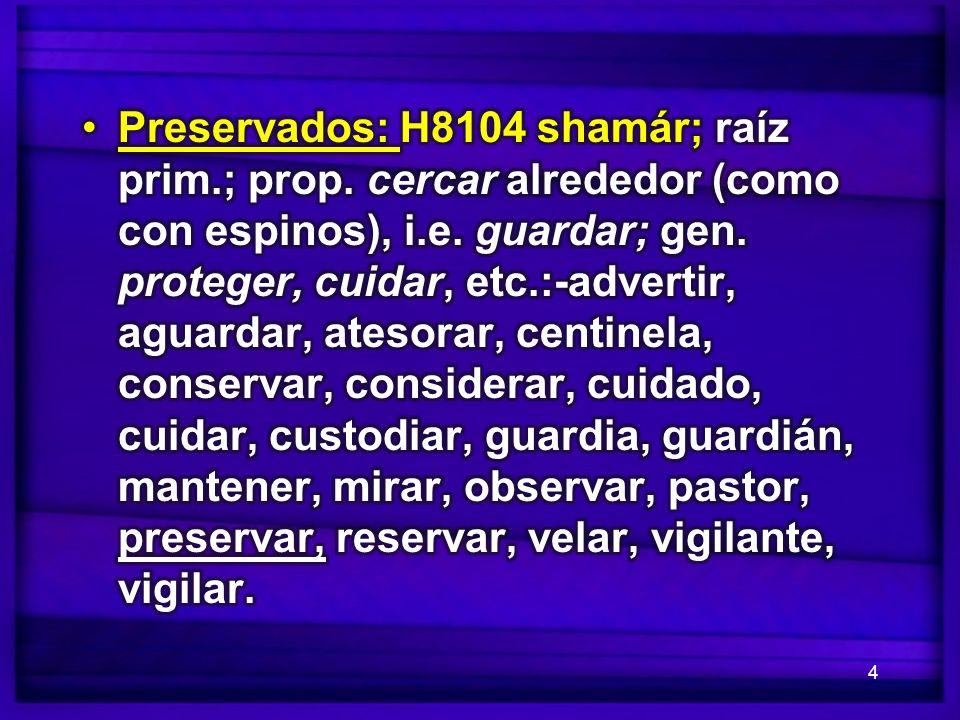 Preservados: H8104 shamár; raíz prim. ; prop