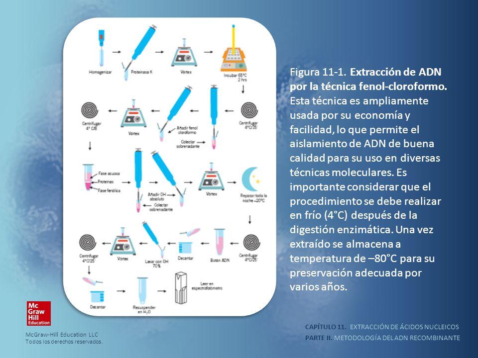 Figura 11-1. Extracción de ADN por la técnica fenol-cloroformo