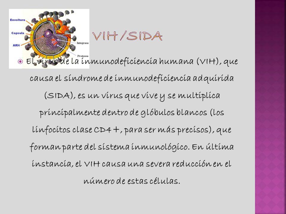 Vih /sida