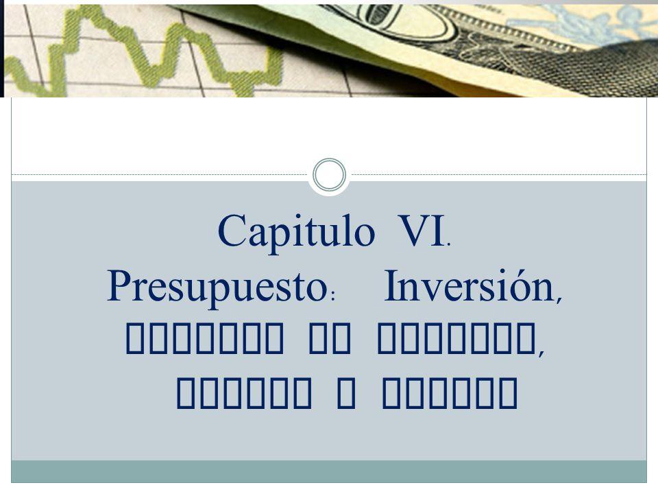 Capitulo VI. Presupuesto: Inversión, Capital de Trabajo, Costos y Gastos