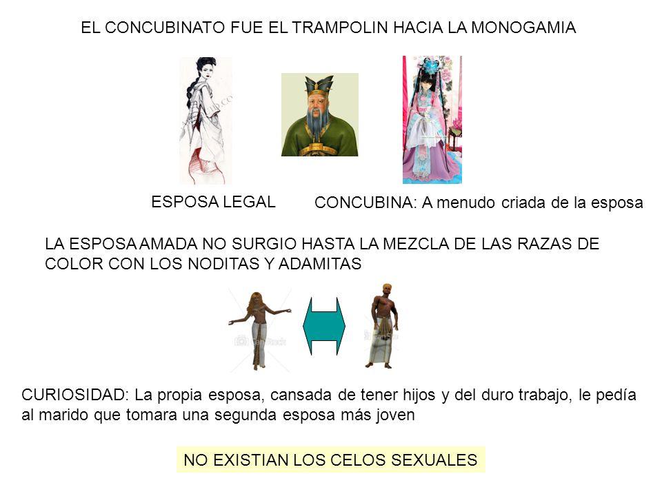 EL CONCUBINATO FUE EL TRAMPOLIN HACIA LA MONOGAMIA