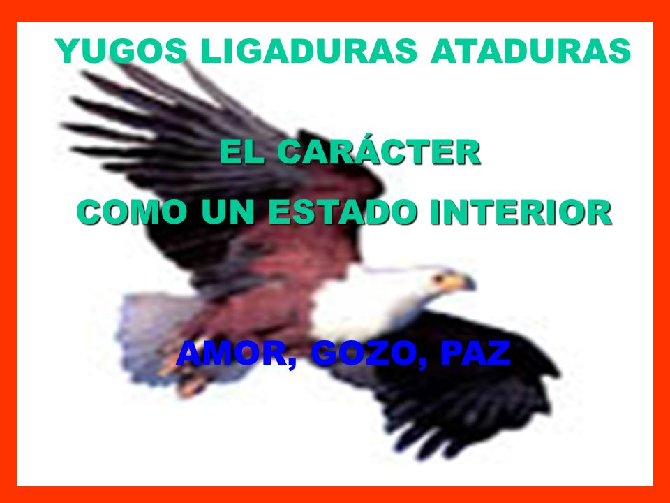 YUGOS LIGADURAS ATADURAS COMO UN ESTADO INTERIOR