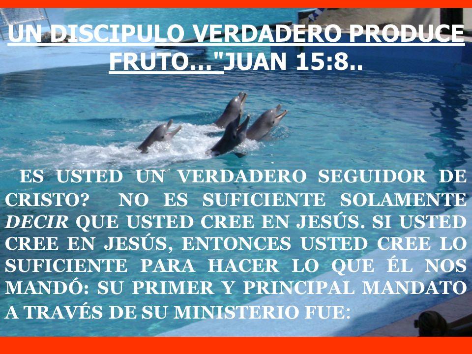 UN DISCIPULO VERDADERO PRODUCE FRUTO… JUAN 15:8..