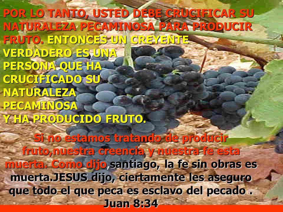 POR LO TANTO, USTED DEBE CRUCIFICAR SU NATURALEZA PECAMINOSA PARA PRODUCIR FRUTO. ENTONCES UN CREYENTE VERDADERO ES UNA