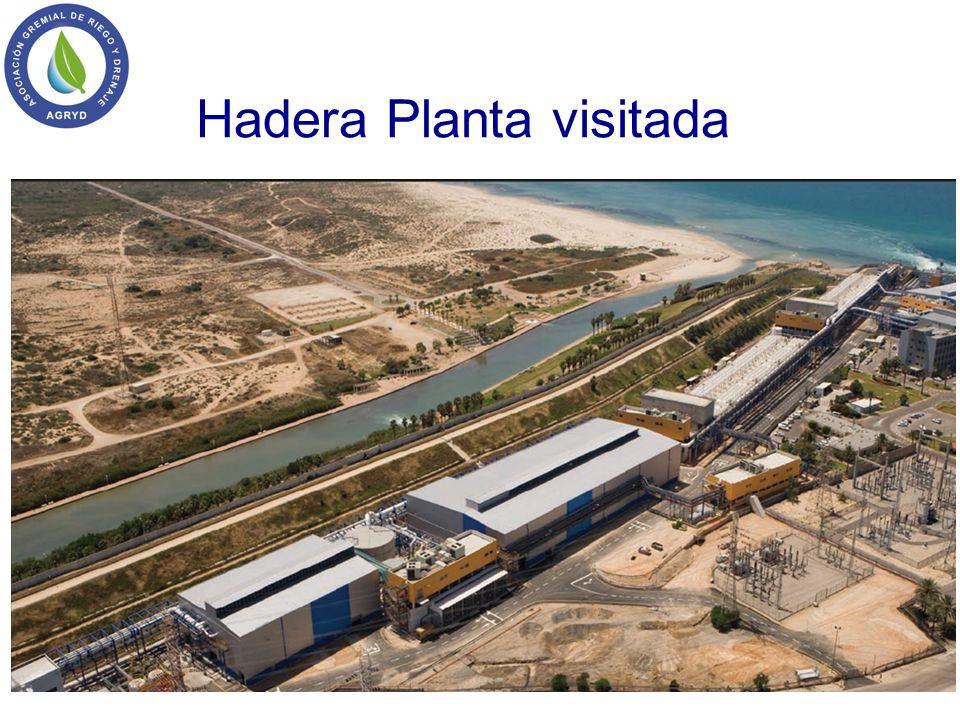 Hadera Planta visitada