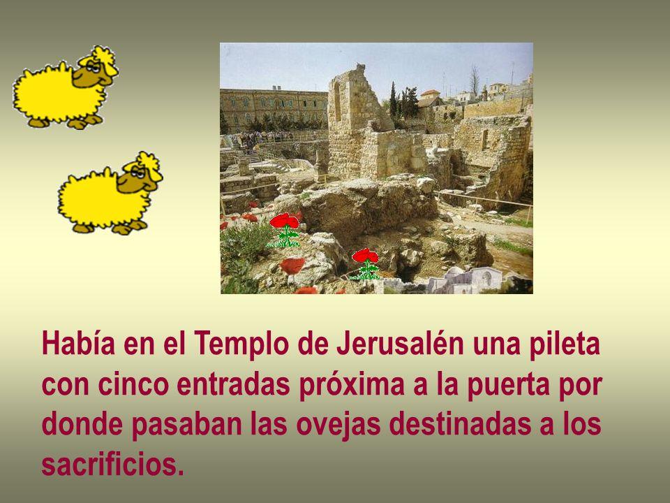 Había en el Templo de Jerusalén una pileta
