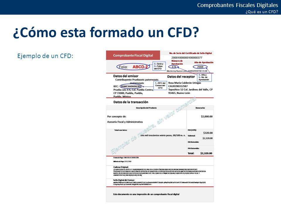 ¿Cómo esta formado un CFD