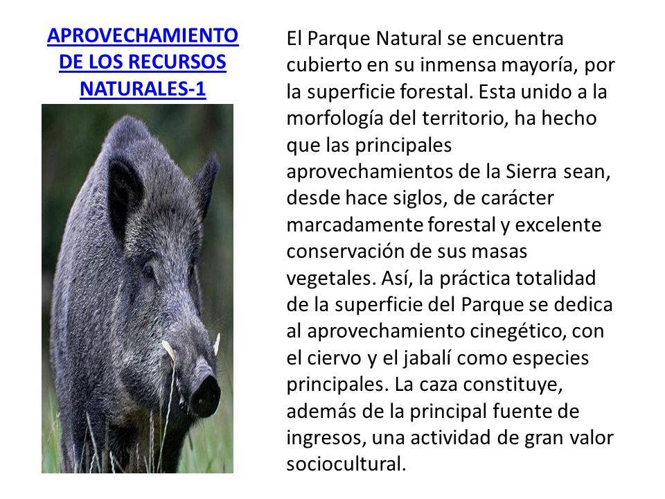 APROVECHAMIENTO DE LOS RECURSOS NATURALES-1