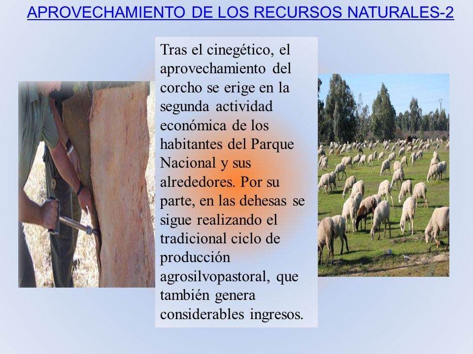 APROVECHAMIENTO DE LOS RECURSOS NATURALES-2