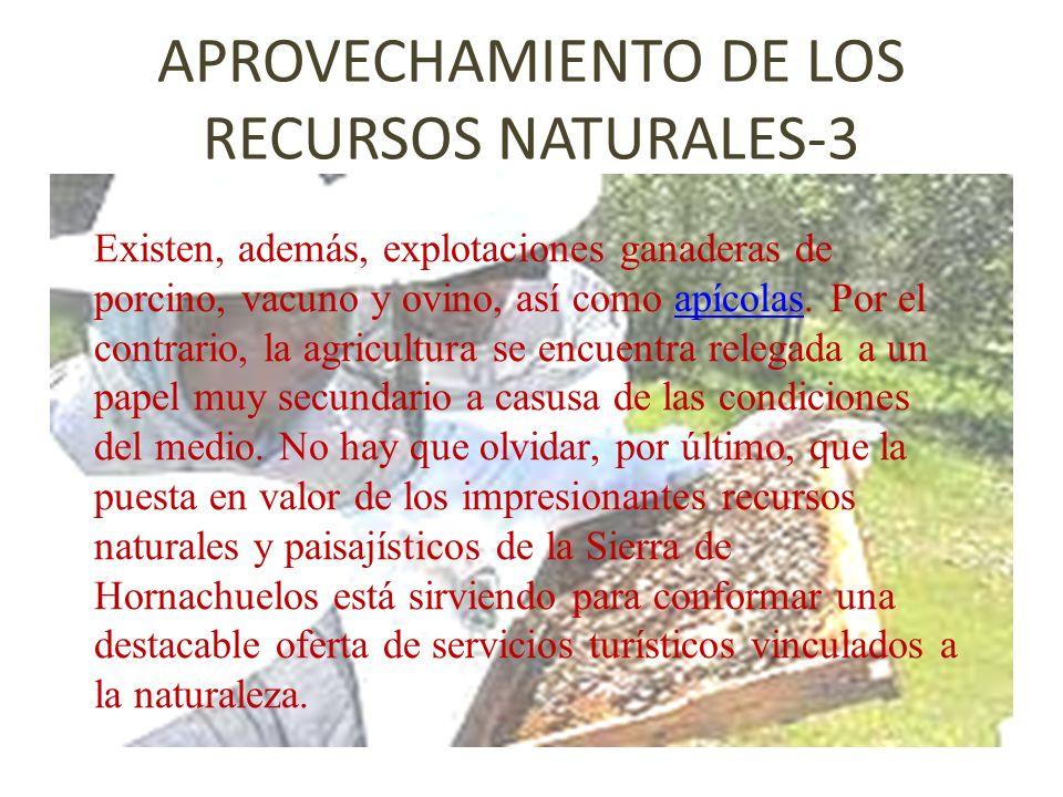 APROVECHAMIENTO DE LOS RECURSOS NATURALES-3